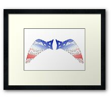 Patriot Wings Framed Print