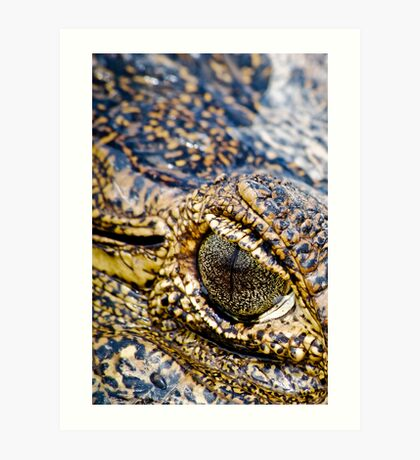 Crocodile eye Art Print