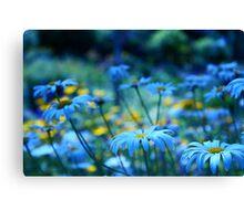 paint me blue Canvas Print
