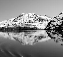Alaska Reflections Black & White by Debra Martz