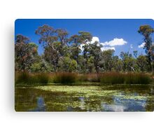 Cathedral Rocks National Park Canvas Print