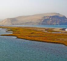 Paracas Landscape by chazthomson