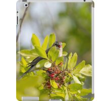 Yellow-rumped Warbler iPad Case/Skin