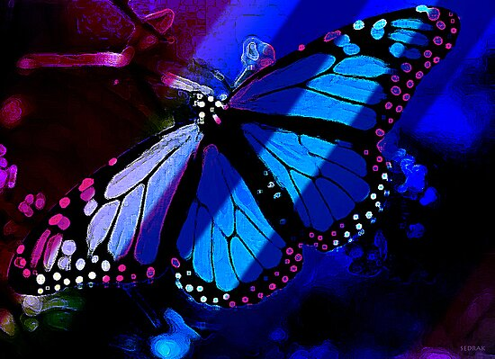 Butterfly Blue by ArtOfficialArt