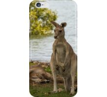 By the Waterfront iPhone Case/Skin