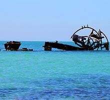 Remains Of  The Paddle Steamer Ozone by Ronald Rockman