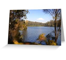 The lake in the forest Greeting Card