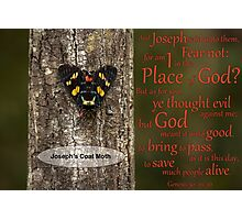 God's Providence - Genesis 50: 19 & 20 Photographic Print
