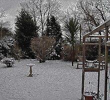 Snowy Garden Colour Engraving by lezvee