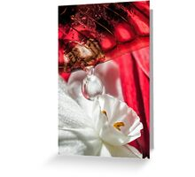 Sweet to the Last Drop Greeting Card
