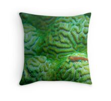 Green Flourescent Pigmy Throw Pillow