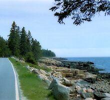 Ocean Drive by chazz