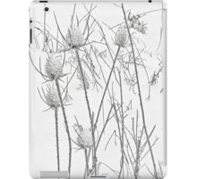 Teasels and Snow iPad Case/Skin