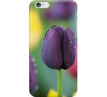 Dark-violet Tulips Flower iPhone Case/Skin