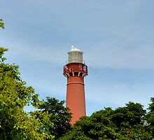 Old Barney - Barnegat Light House NJ - Behind the Trees by Paul Gitto