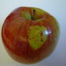 AppleLeaf  by RealPainter