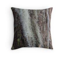 Spanish moss in winter Throw Pillow