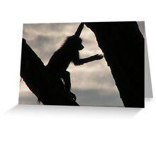 Monkey, Serengeti Greeting Card