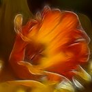 Daffodil Dreams by Lesley Smitheringale