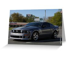 2008 Ford Mustang Rousche  Greeting Card