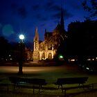 Notre Dame at dusk. by Andrew Ferguson