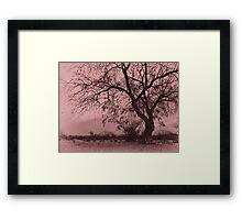 Pink Desolation Framed Print