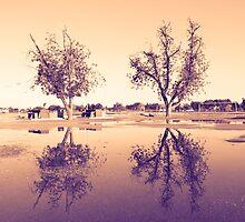 Flood Brothers by richard-harlos