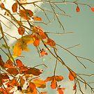 Allusion to Autumn by Rachmat Lianda