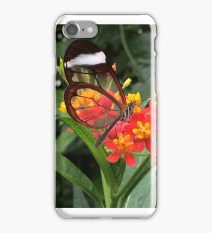 Butterfly on Flower iPhone Case/Skin