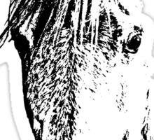 Equine Sticker