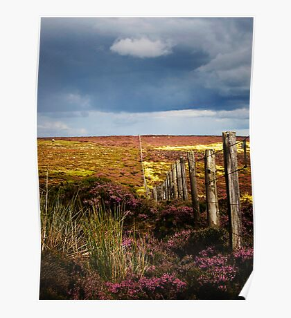 Moorland Fence Poster