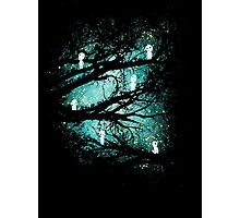 Tree Spirits Photographic Print