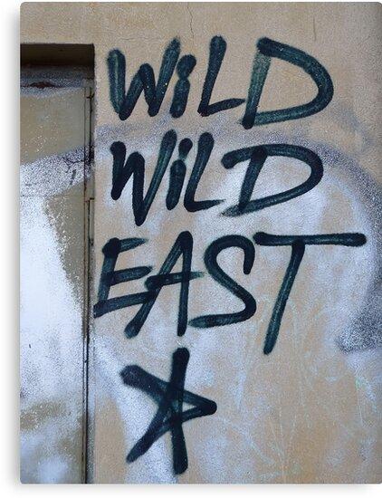 Wild Wild East... by Nuh Sarche