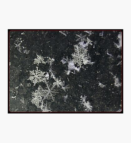 Snow Flakes by Design. Photographic Print