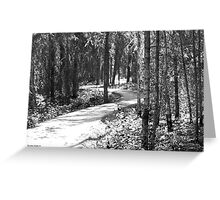 Curves In The Path Greeting Card