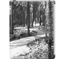 Curves In The Path iPad Case/Skin