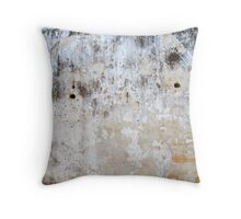 Fort Wall Throw Pillow
