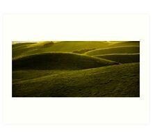 Green Folds Art Print