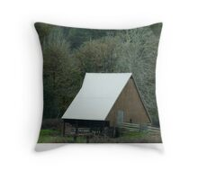 Beautiful Barn Throw Pillow