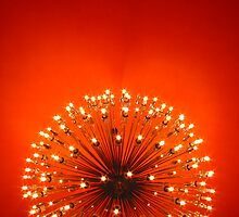 Sputnik by Travis Hammond