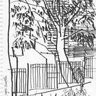 Surry Hills Streetscape by Jeffrey Hamilton