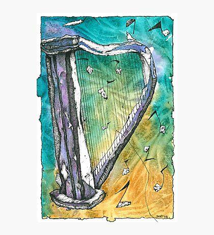 Harp Notes Photographic Print
