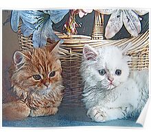 Stylized photo of two kittens and a decorative basket. Poster