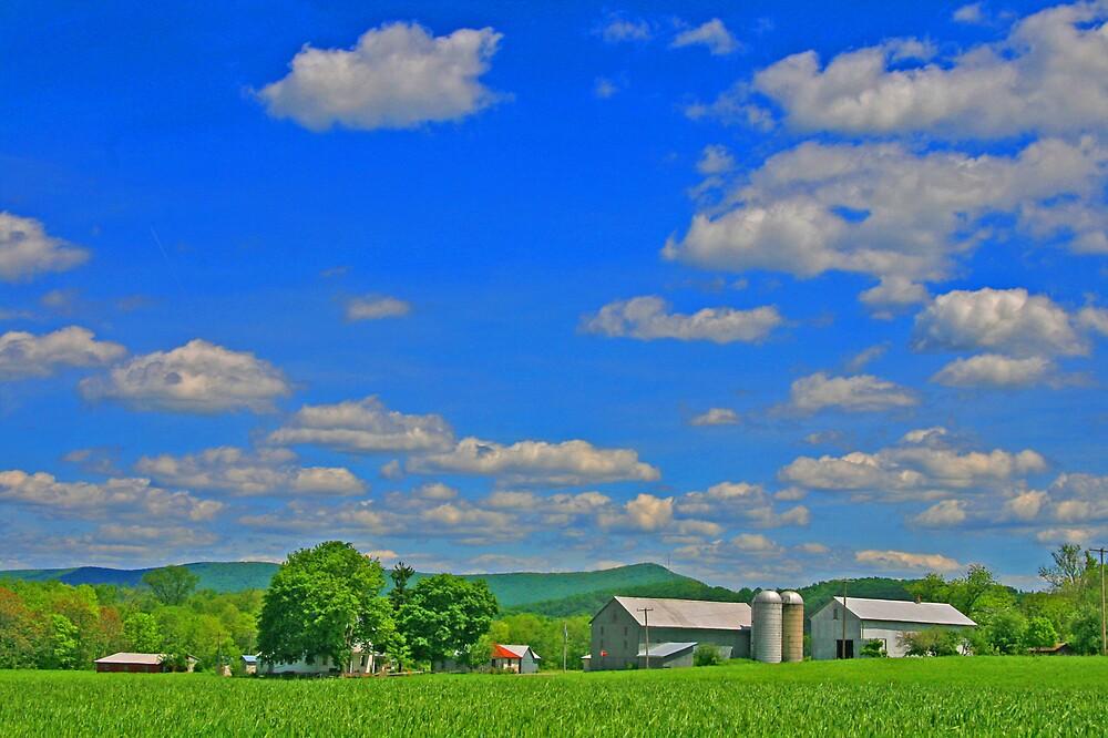 A Family Farm by tinmar