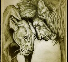 lion, lioness drawing by RobCrandall