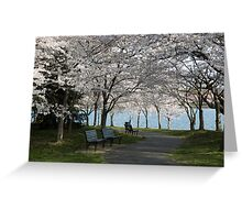 Relaxing Beauty Greeting Card