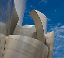 Walt Disney Concert Hall by Mark Alfonso