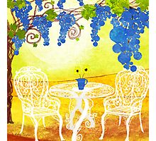 Table under a grapevine Photographic Print