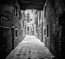 Venice by Traven Milovich