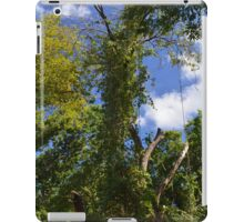 Green Trees and Blue Sky iPad Case/Skin